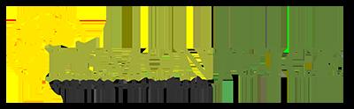 Lemonjuice Solutions Logo
